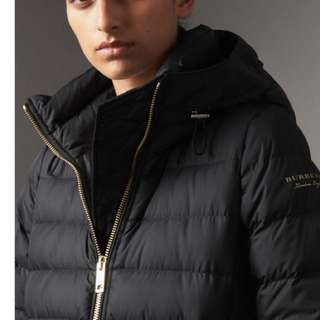 (ALL NEW) BURBERRY hooded down jacket