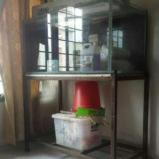 4×2 feet Fish Tank