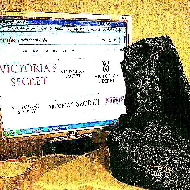 維多利亞的祕密  美國名模Victoria's Secret