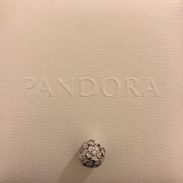 Pandora Floral Clip