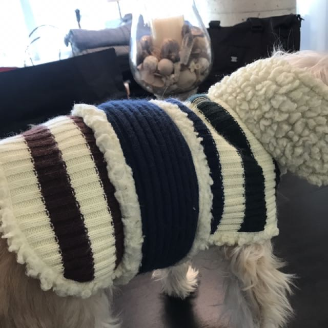 Wool knit dog sweaters size small and Xsmall $10 each