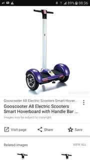 Electrical bike