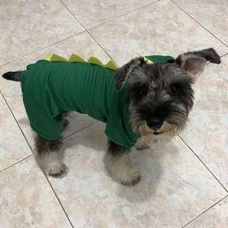 Pet clothes (Dino)