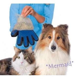現貨~防咬貓手套 乾濕兩用 好梳好清 寵物按摩梳 梳毛手套 貓咪梳毛 狗狗梳毛 寵物美容梳