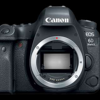 Canon 6D Mark II (Body)