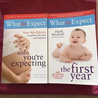 WHAT TO EXPECT - Pregnancy, the first year & the second year