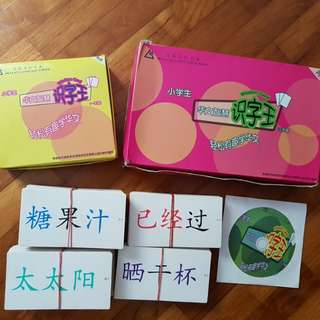 Skylace Wisdom Cards For Primary 1-3 (Chinese Flash Cards)