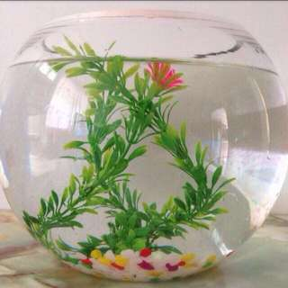 Glass Fish Bowl/lucky draw bowl