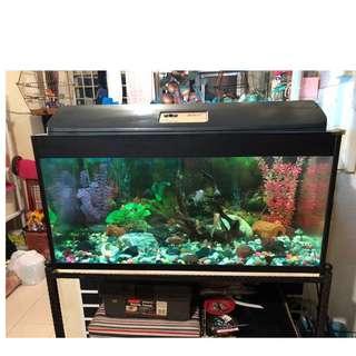 3 Feet Fish Tank (3-1.5-1.5)