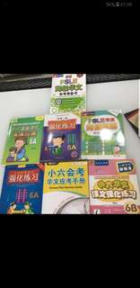 Higher Chinese assorted books for PSLE
