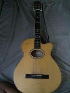 RJ Prestige Acoustic Electric Nailon Guitar