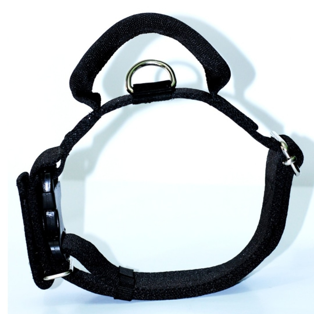Dog Collar, Kalung Anjing Dengan Handel dan Sefety Pengunci