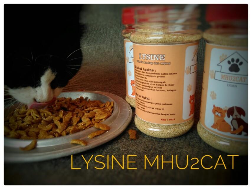 Lysine mhu2cat