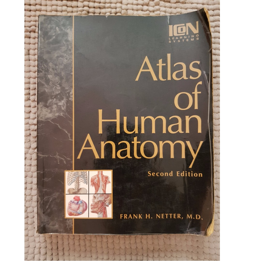 Netters Atlas Of Human Anatomy Books Stationery Books On Carousell