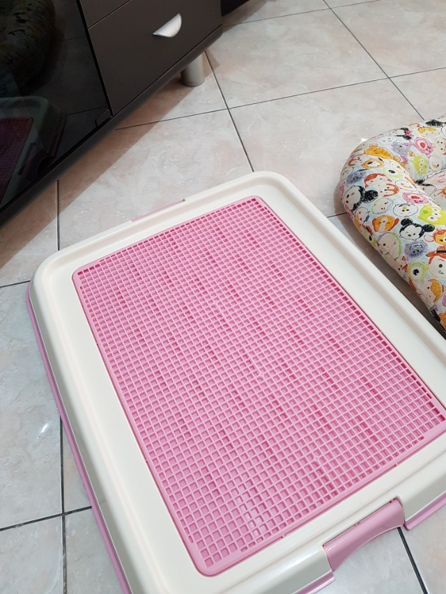 Toilet Training Large Size 45x65 + tempat tidur doggie  (Bundling)