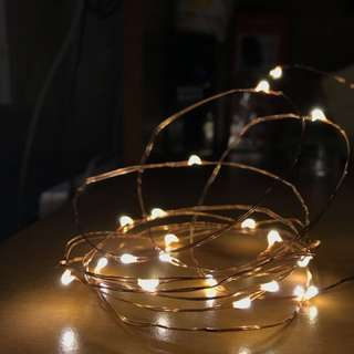 Fairy Lights (Copper Wire LED)