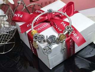 Pandora Bracelet with Charms included