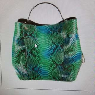 Christian Dior Python Diorific Buckey Bag