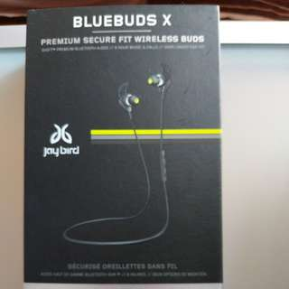 Jaybird BlueBuds X (premium secure fit wireless buds)