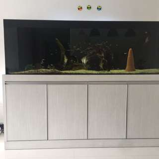 6x2x2 sump tank for sale(less than 1 year)