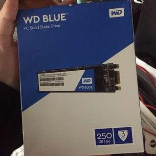 WD PC SSD 250GB SATA M.2 2280