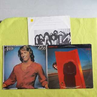 2LP. ANDY GIBB / ALBERT LEE.  shadow dancing/ hiding. ( 2 Lp for the price of 1 ) Vinyl record
