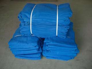 Safety Blue Netting - 5.1m