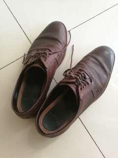 Coach Shoes size 41