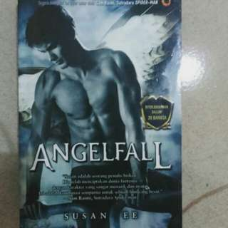 Novel angel fall