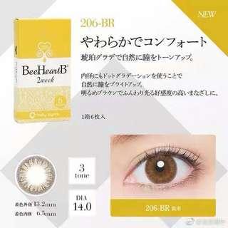 Japan Beeheartb #206 2 weeks color contact lens brown