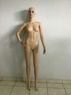 Manekin full body