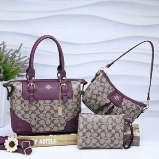 Coach Bags 3 in 1 Purple Color