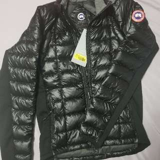 Canada goose Men hybridge lite jacket