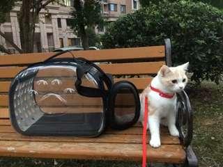 ¤扭扭貓鋪¤透氣透明寵物外出包