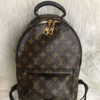 Louis Vuitton Palm Spring Backpack - PM