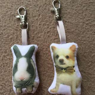 Customised your very own furkids Plushy