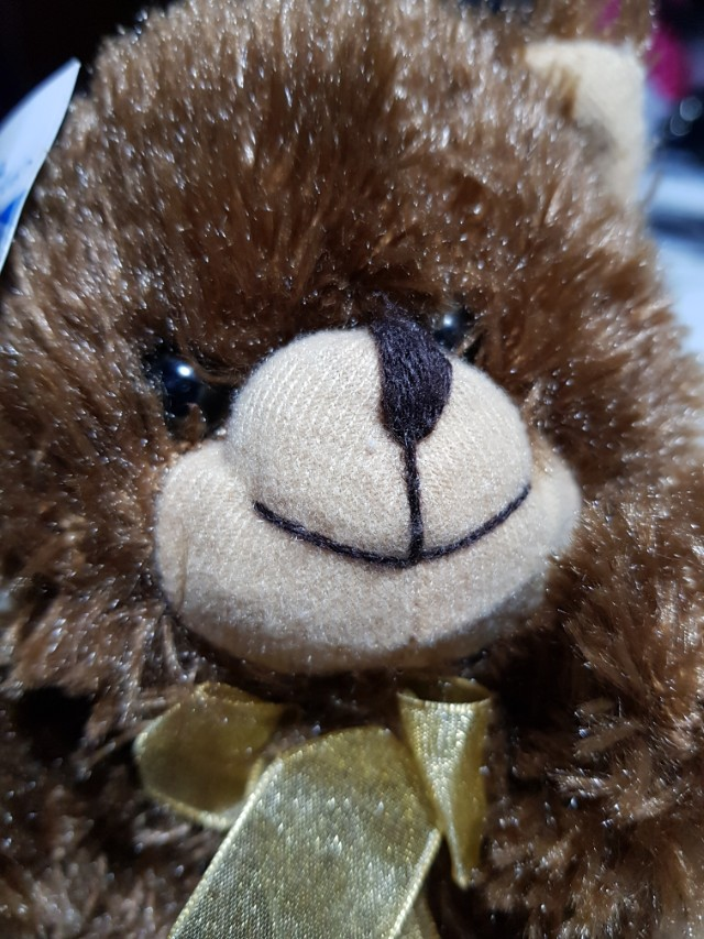 Brown Teddy bear stuffed toy