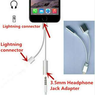 2 in 1Earphone Adapter Lightning Micro USB Charging Cable