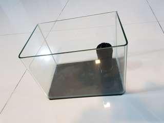 Small Fish Tank (26cm x 17cm x 19cm)