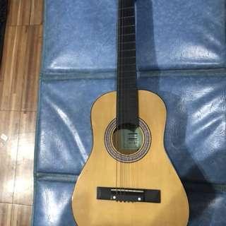 Global A -13 Guitar Local