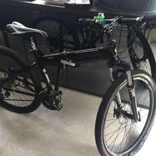Java cappuccno bike