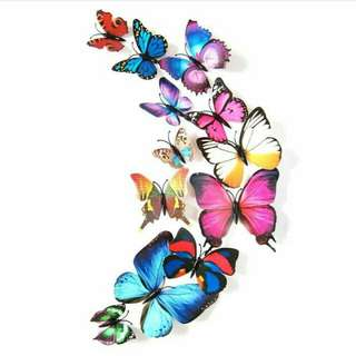 Walls sticker butterfly dg magnet