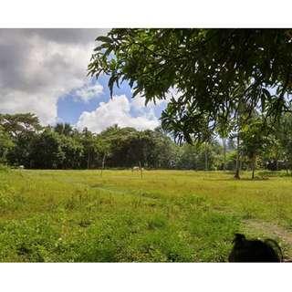 Residential Lot for sale Lobo Batangas
