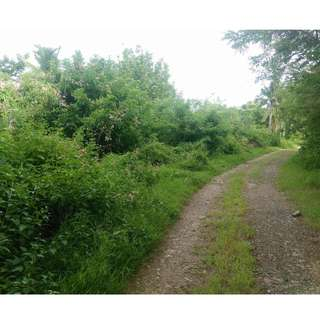 Lot for sale Lobo batangas