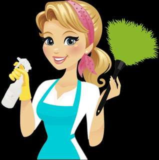 Part Time Home Cleaner