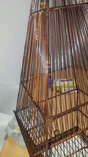 Jambul cage 17 stick with cover