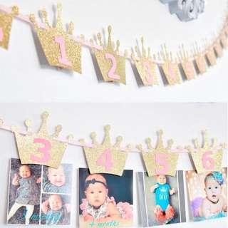 1st birthday -monthly milestone photo banner