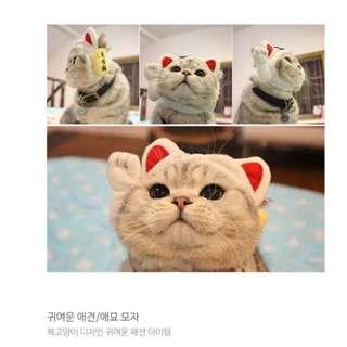🎏韓國招財貓貓咪帽🐈