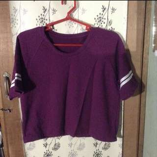 REPRICED!!! Maroon Varsity Cropped Top