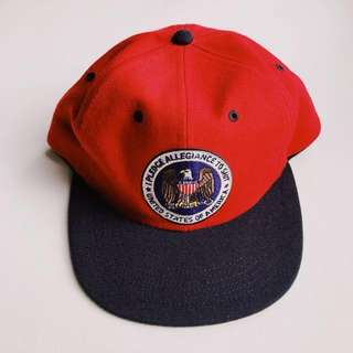 e1adb0a3eb3d1 Supreme Caps 6 Panel Pledge Allegiance